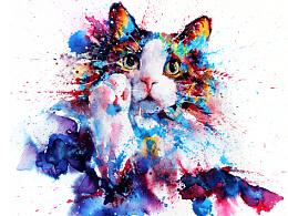 水彩下的猫青年...