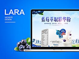 保健品/蓝莓萃取精华粉详情页设计