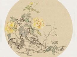 草药花园里的小甘草花~