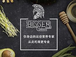 2016 | 缤格沙拉BIGGER SALAD-VI设计
