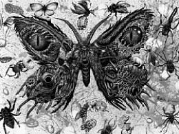"""""""窒息微观""""系列一号实验作品————《亡蛾》手绘过程"""