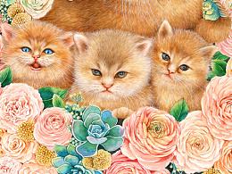 肥宅猫水彩插画