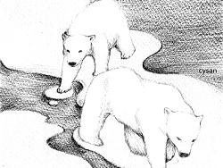 我想保护你,亲爱的北极熊