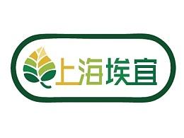 logo练习设计
