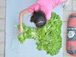 蔬菜《装》