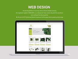 光合作用网站设计