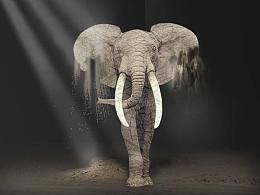 大象沙化合成