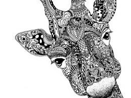 据说——长颈鹿是寂寞专家
