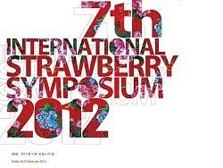 草莓大会设计始末