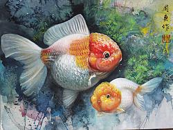 水彩金鱼定制