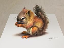 【彩铅立绘】一只小松鼠