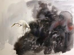 白鹭-水彩作品