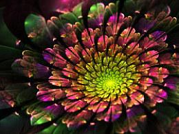 分形系列(八):绽放----花非花,叶非叶