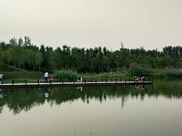 绿树村边河,清杉涡外霞
