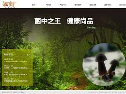 公司企业官网   网站设计-首页轮播