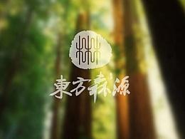 东方森源品牌形象设计