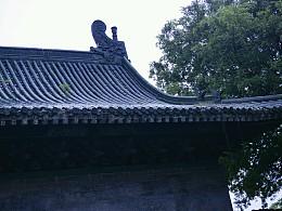 楚昭王陵寝