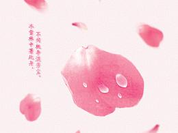 花瓣上的水滴