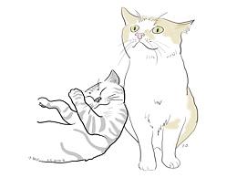 给我家猫咪来个合照,画一张