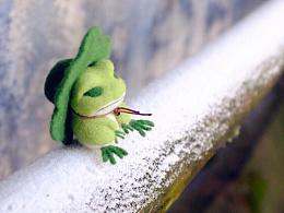 青蛙旅行羊毛毡