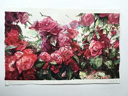 近期的水彩花卉,爱上洒上阳光的花儿