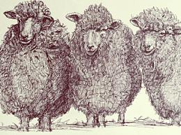 羊羊羊——三羊开泰
