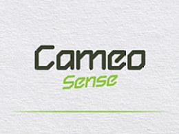 西文字体设计 Cameo Sense