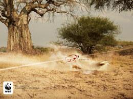 看不见?——WWF公益广告