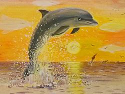 海洋绘本 小海豚喜欢云