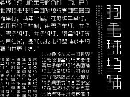 羽毛球场体|中英文字体实验
