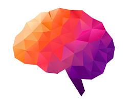 视觉头部内部结构