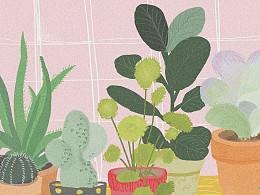 这些我们种植的植物也会同样地改变我们么?