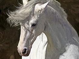 《白马Ⅱ》