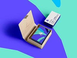 HEREidea英合创意|原创作品:VECTOR品牌视觉设计