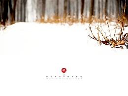 2015,邯郸,第一场雪