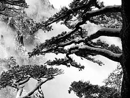 黄山-排云亭