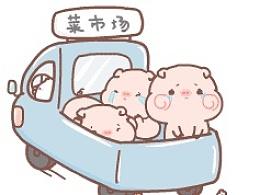 微信表情 我在公路上看到一车去菜市场的猪~piyo第二窝