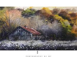 小花的水彩~林中小屋~