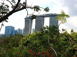 新加坡考察/2015