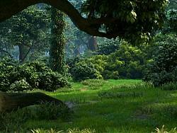 半卡通森林
