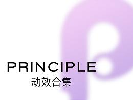 Principle 动效设计合集(一)