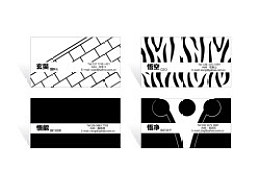 西游记。2010年5月视觉传达设计毕业设计展
