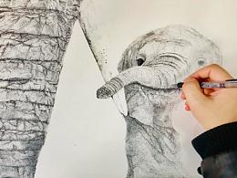 点绘画-象