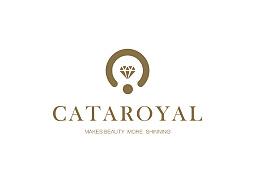 卡塔洛亚 VI提案二