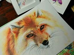 彩铅手绘 三月