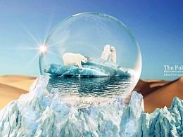 北极熊-修改