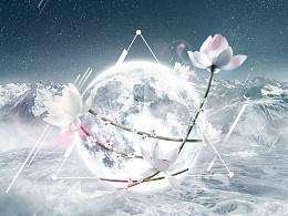 「壁纸」Se sono rose, fioriranno.