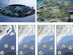 第50届ifla景观设计竞赛作品(2012)