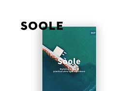soole浏览器交互UI设计
