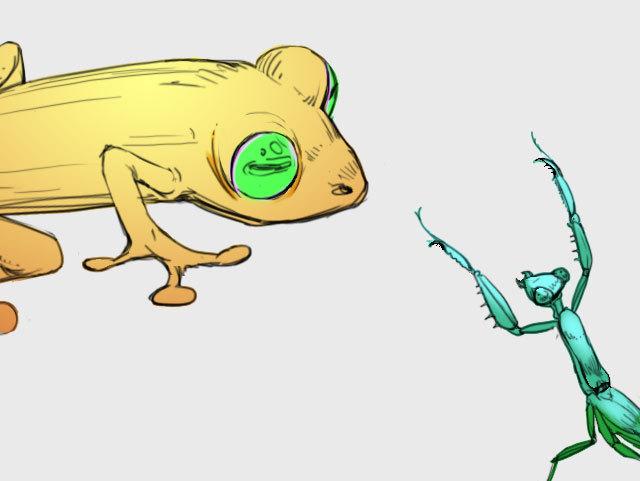 青蛙��h�_青蛙